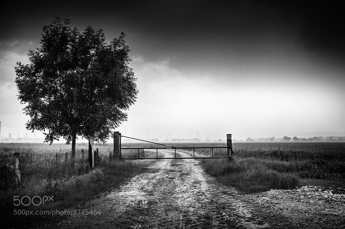 Photograph La pluie by Jean-Baptiste Poulain on 500px