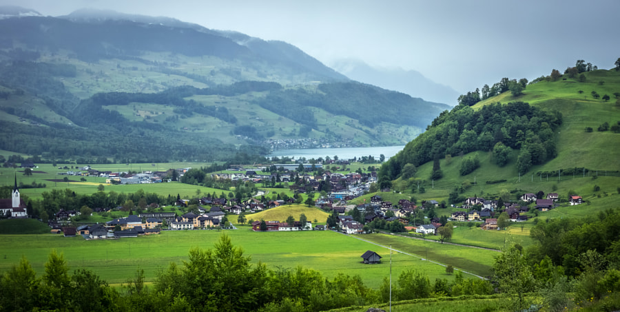 Swiss Views XII