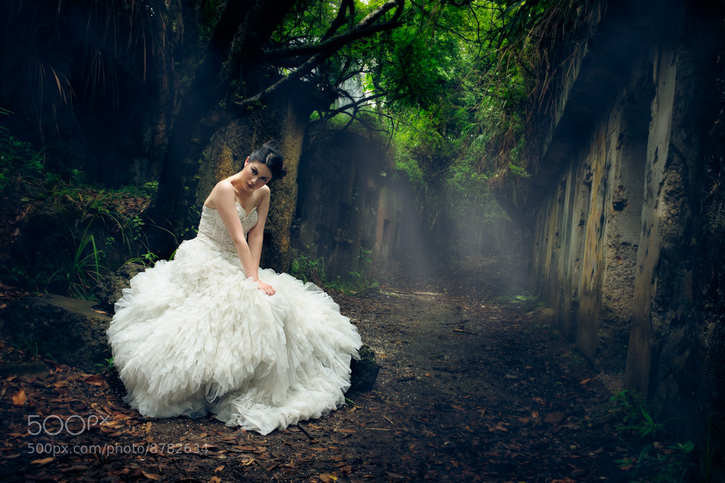 Photograph Forest Faerie by scott brooks on 500px