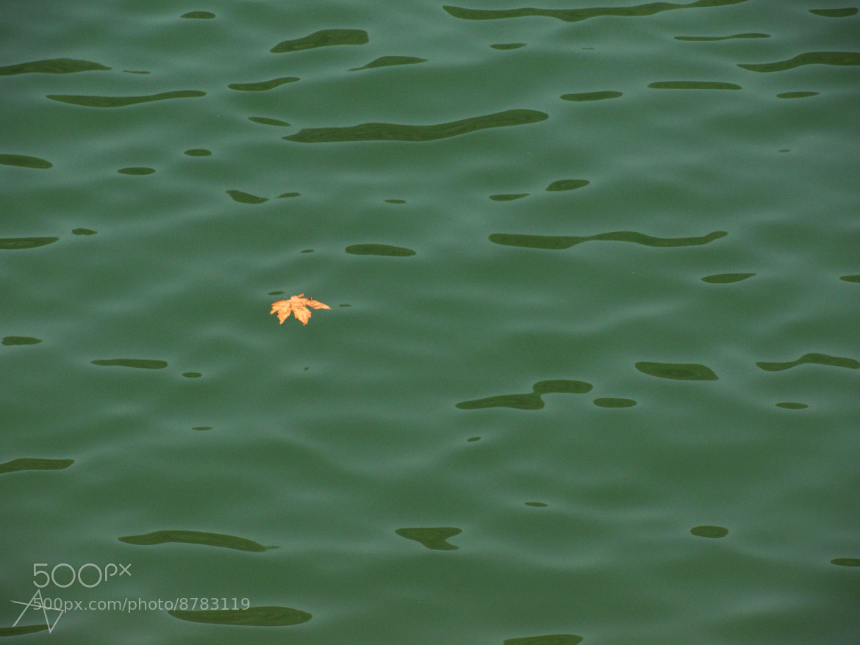 Photograph float by ajinkya dixit on 500px