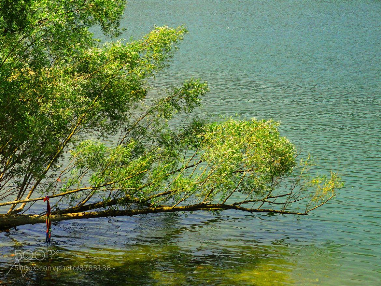 Photograph tilt by ajinkya dixit on 500px