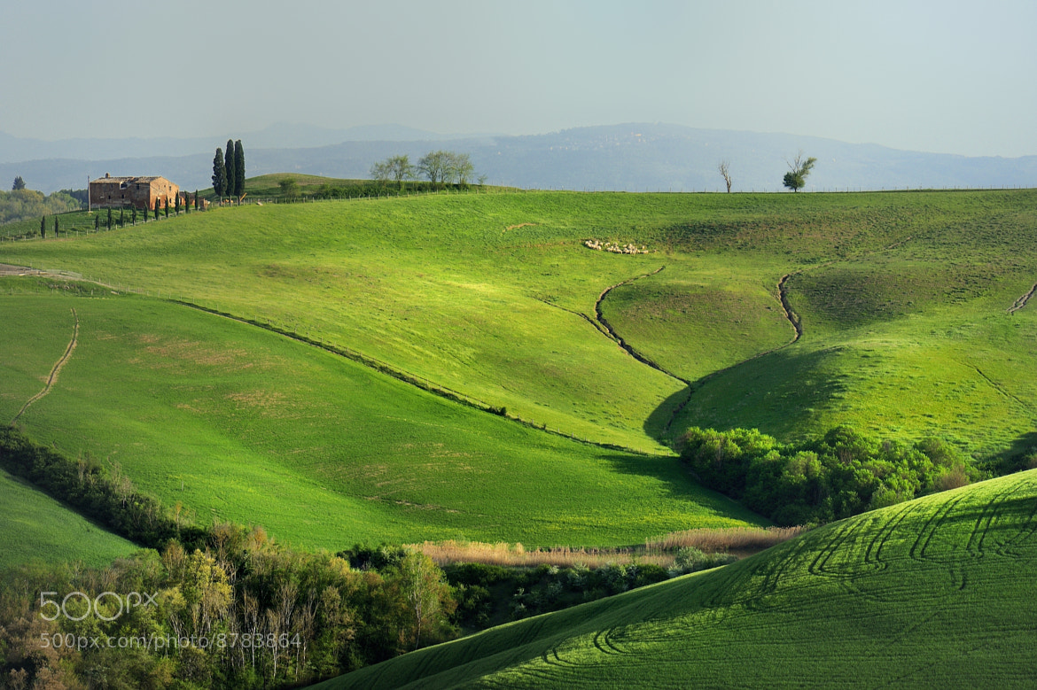 Photograph pasture by mauro maione on 500px