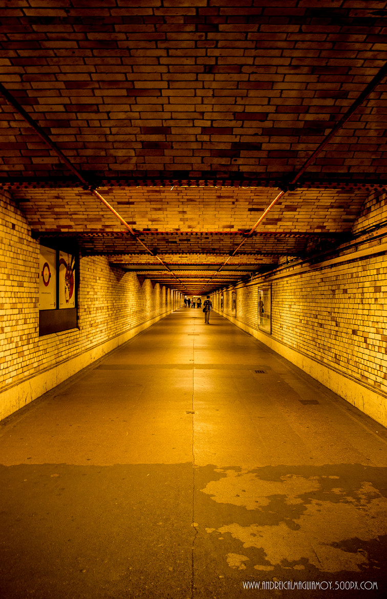 Photograph Gold Tunnel by Andrei Josef Guiamoy on 500px