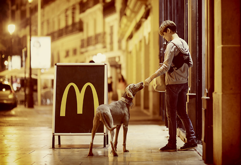 Photograph Dog's Food ? by Manuel Orero on 500px