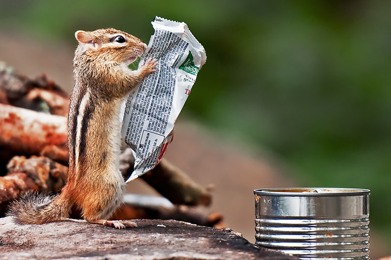 Photograph and in today's news... by Michael Higgins on 500px