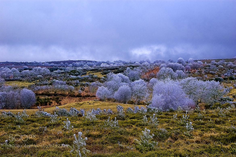 Photograph Colors by Jorge Cacharrón on 500px