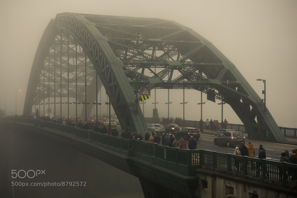 Photograph The Beckoning Fog by Chemival . on 500px