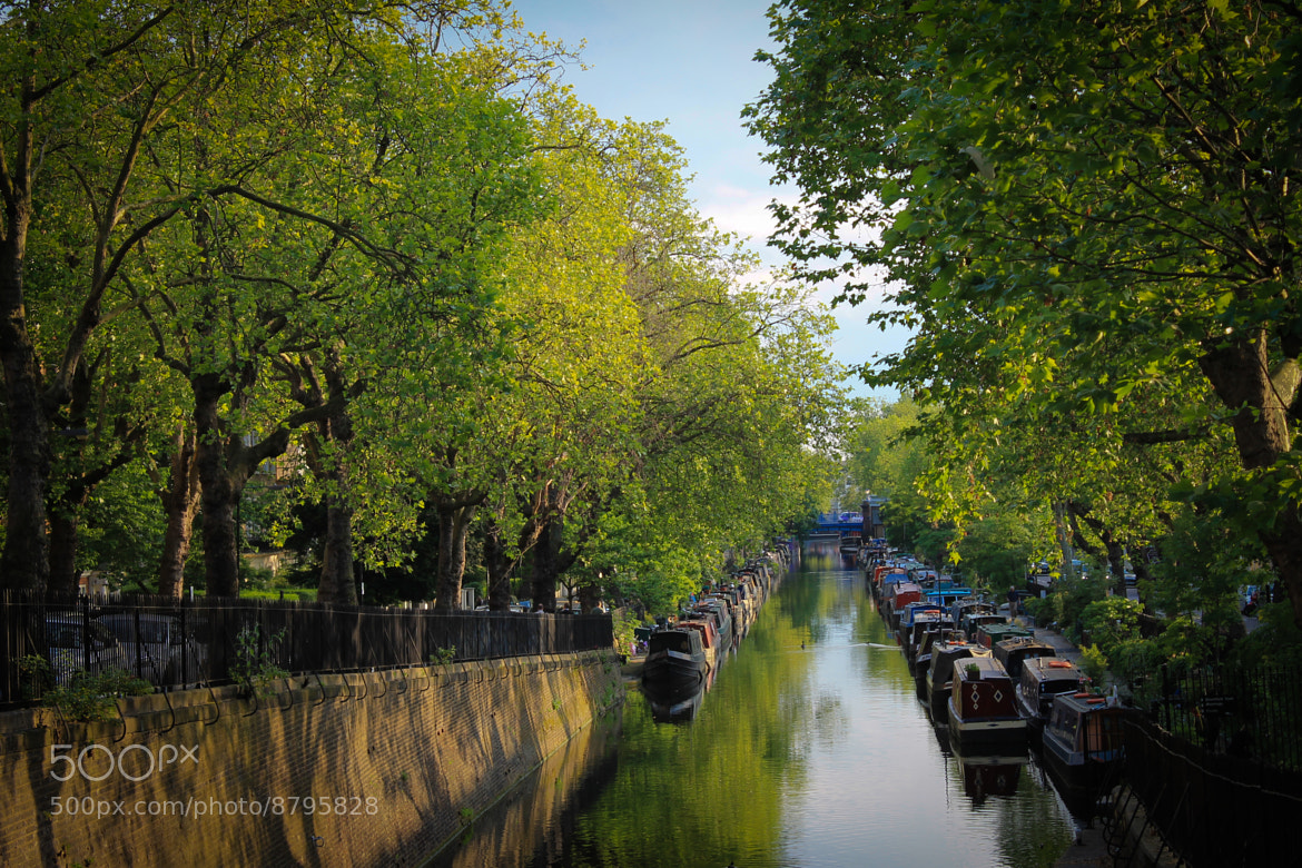 Photograph Canal by Ahmed Fayadh on 500px