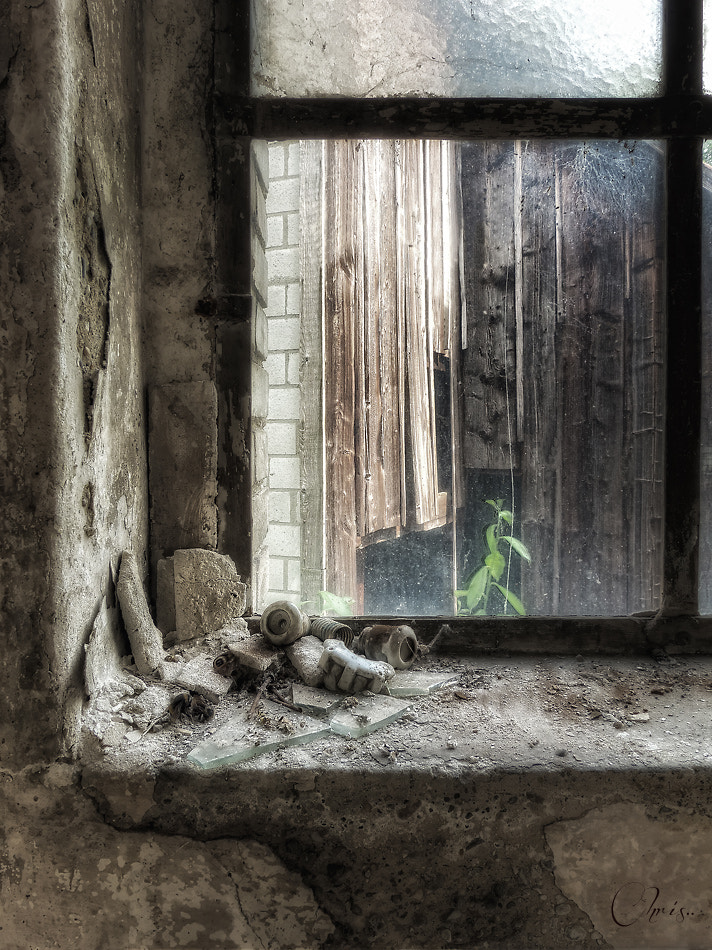 Photograph The slow but sure Decay by Christian Boss on 500px