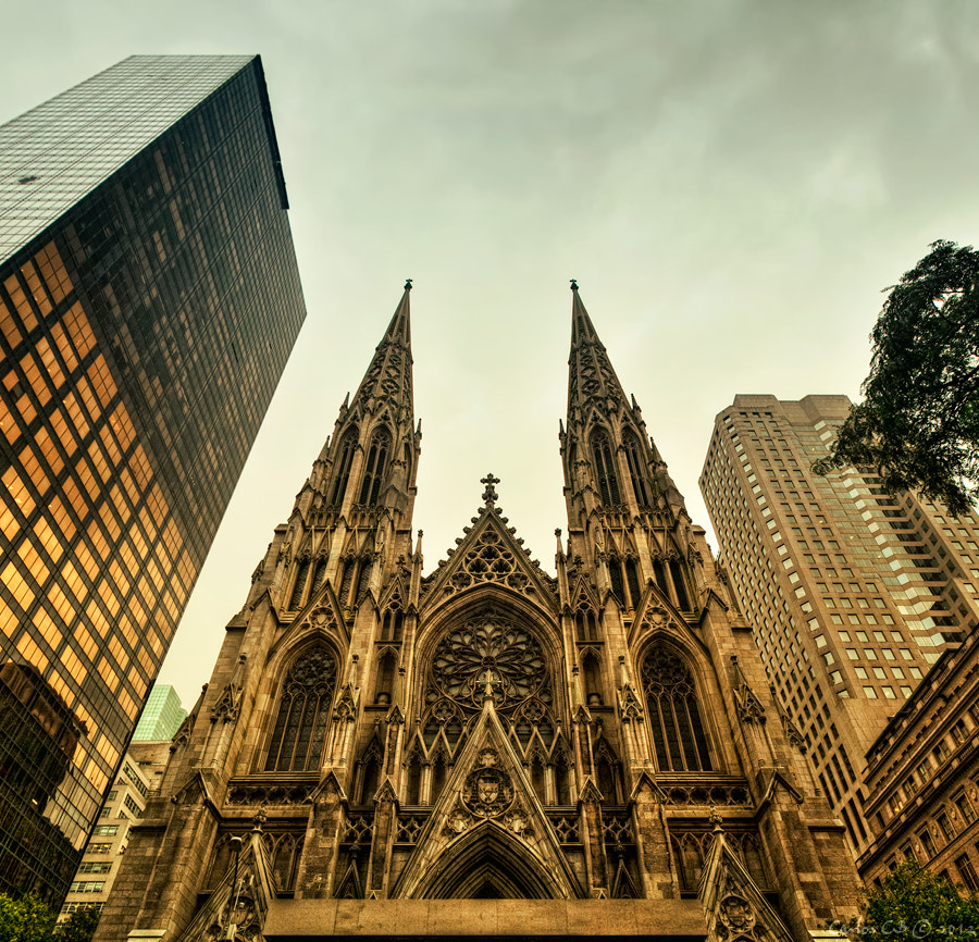 Photograph St Patrick's Cathedral...and the modern buildings by Carlos CB on 500px