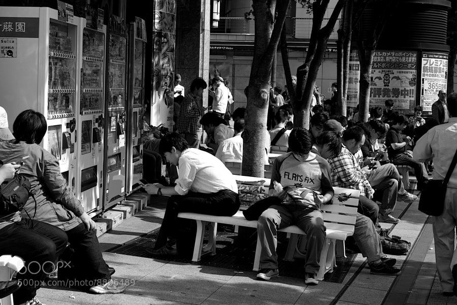 Photograph Lunchtime by Adrian Lee on 500px
