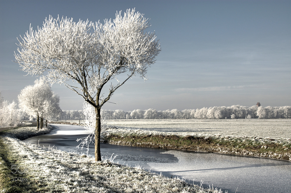 Photograph Winter's Day by Daniel Bosma on 500px