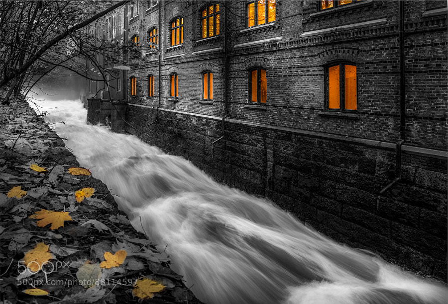 Photograph Selective river by Thomas Bjørnstad on 500px
