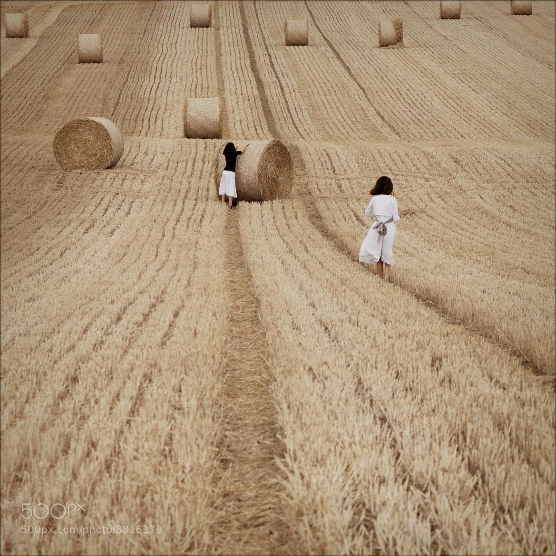 Photograph l'été en 16/9  #02 by nicolas Eliard on 500px