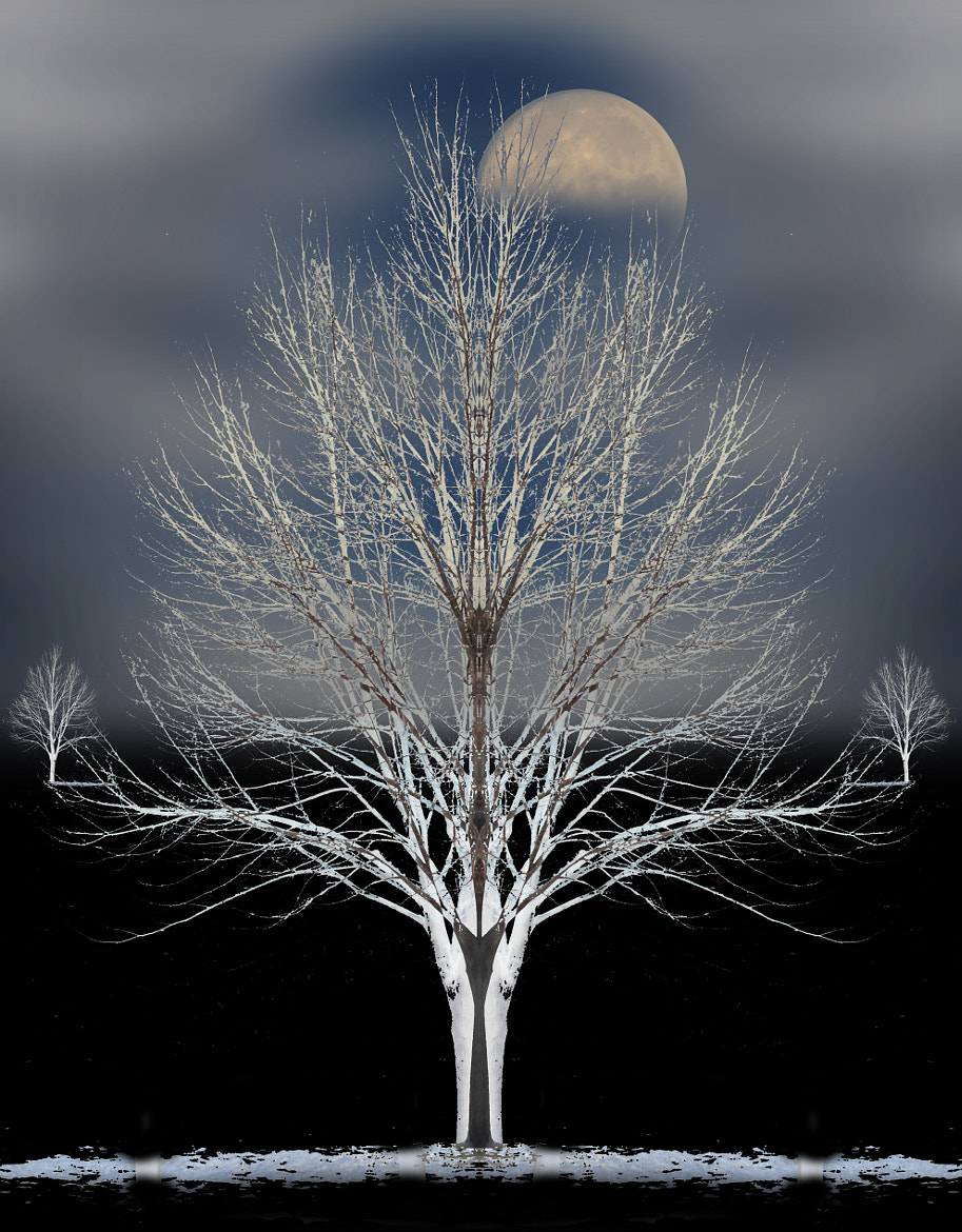 Photograph 1762 by peter holme iii on 500px