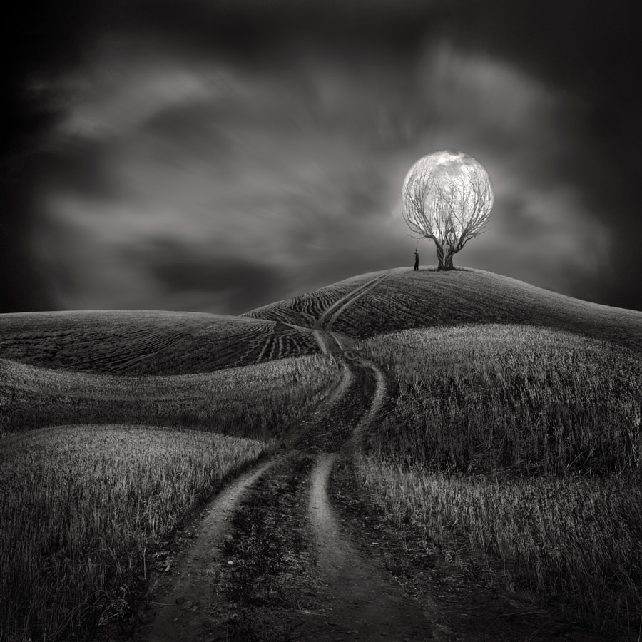 Photograph Illuminate my Heart by Sherry Akrami on 500px