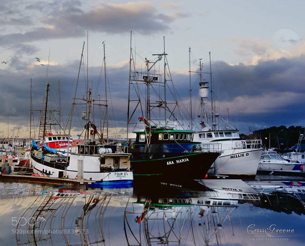 Photograph Embarcadero Fishing Boats by Cass Peterson Greene on 500px