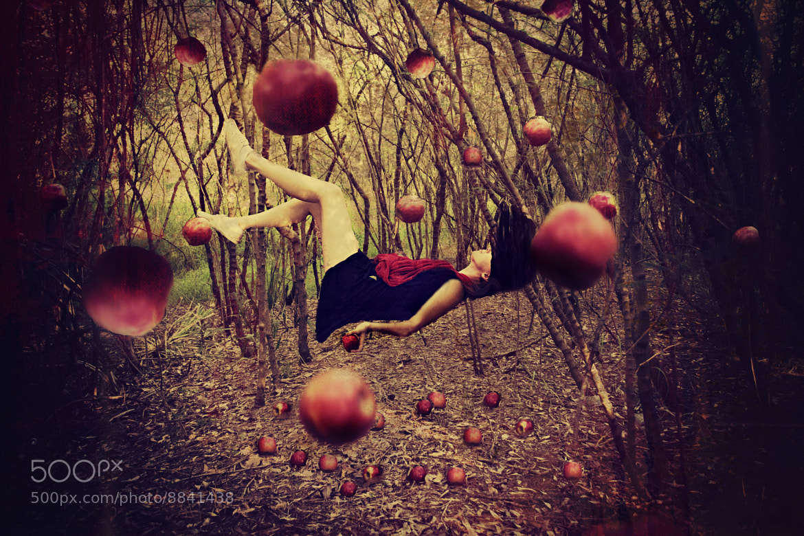 Photograph Falling Apples by Isabelle Phillips on 500px