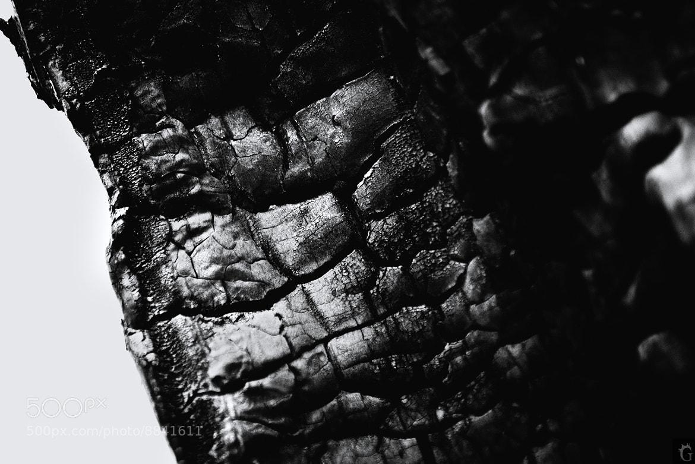 Photograph Untitled by Vinni Vinnyk Igor on 500px
