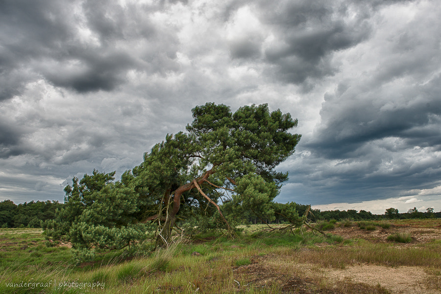 Photograph Stormy weather by Richard van der Graaf on 500px