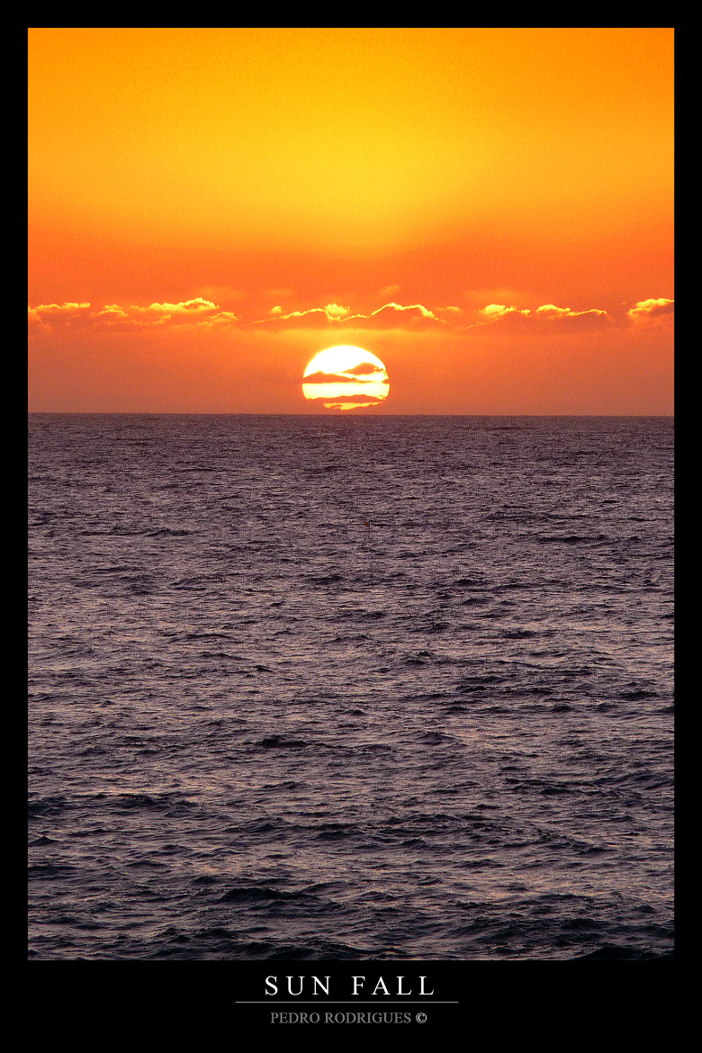 Photograph Sun Fall by Pedro Rodrigues on 500px