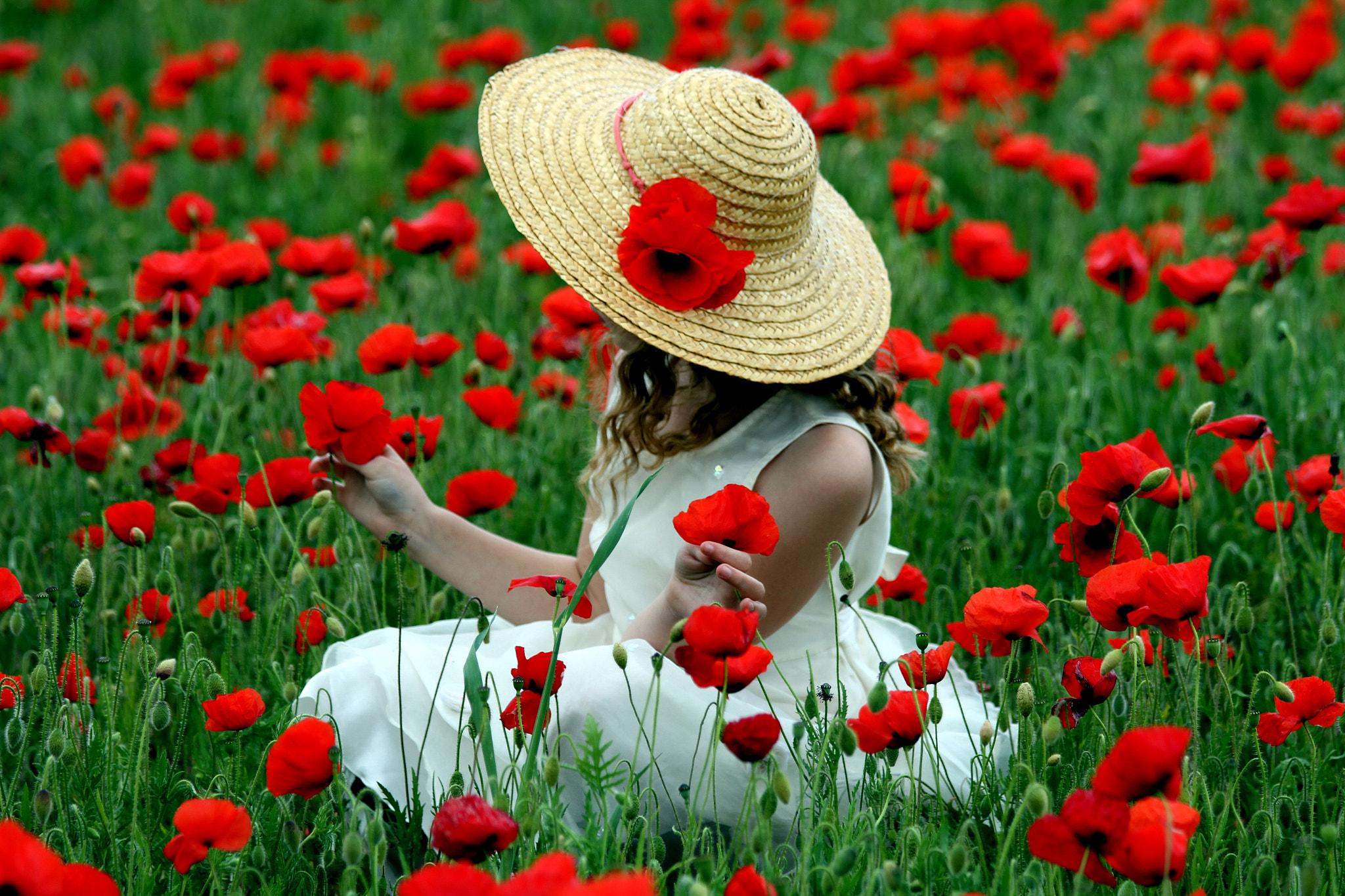 Photograph Girl in poppy field by Scirocco Jade on 500px