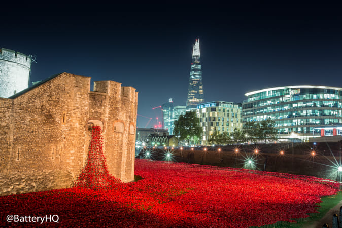 Tower of London poppies by night by 500px on 500px