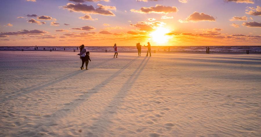 Florida shadows