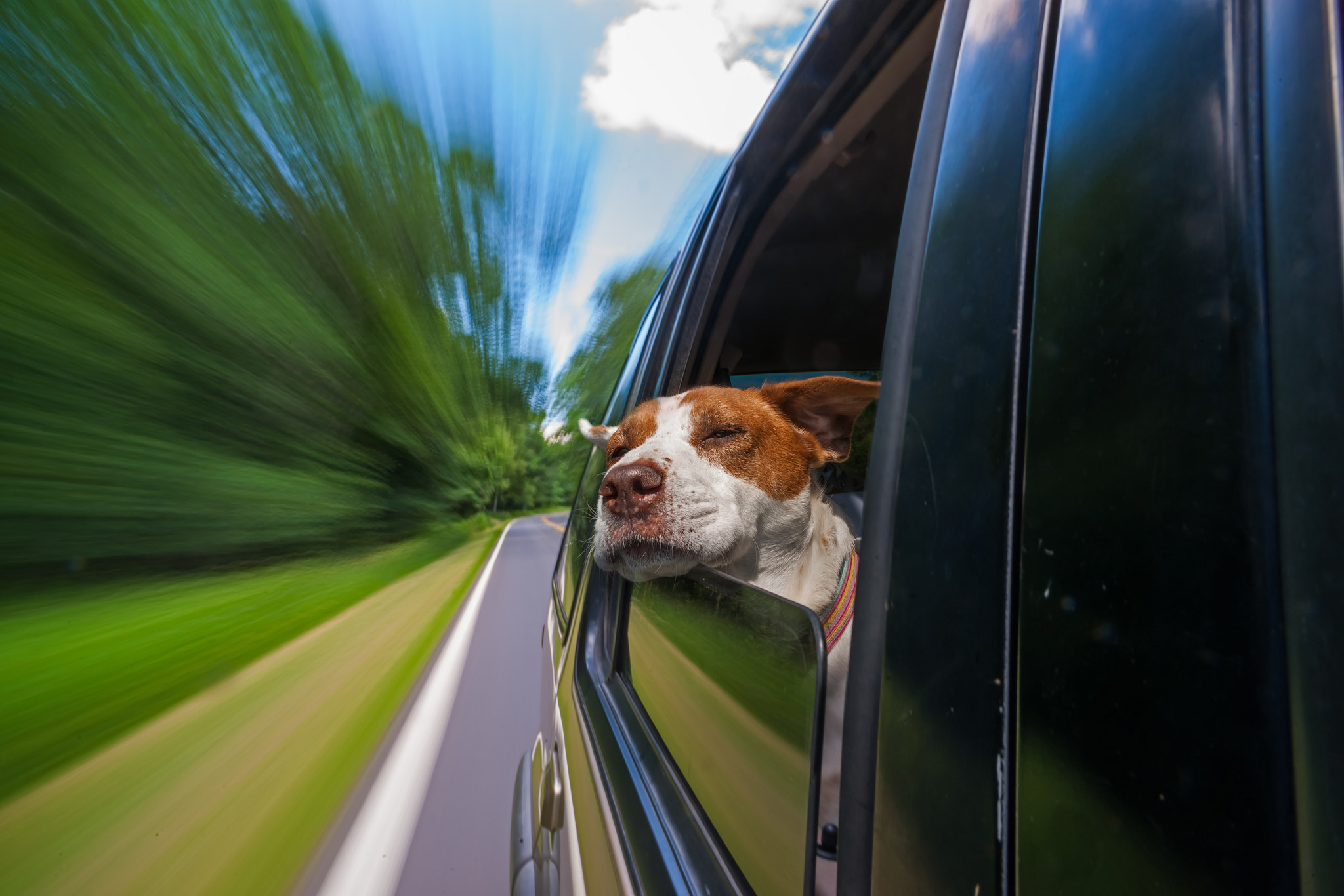 Photograph Car Ride!!! by Monico Havier on 500px