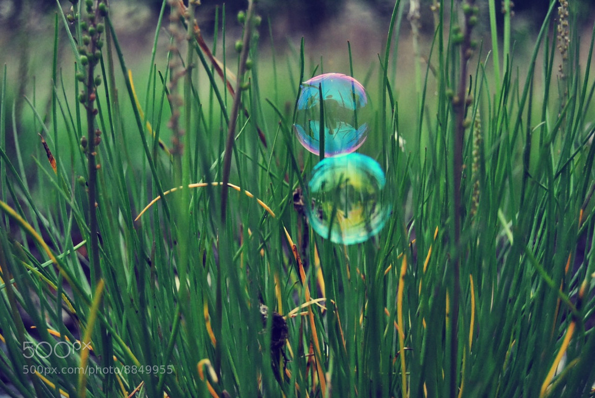 Photograph bubbles by Ida Bakke on 500px