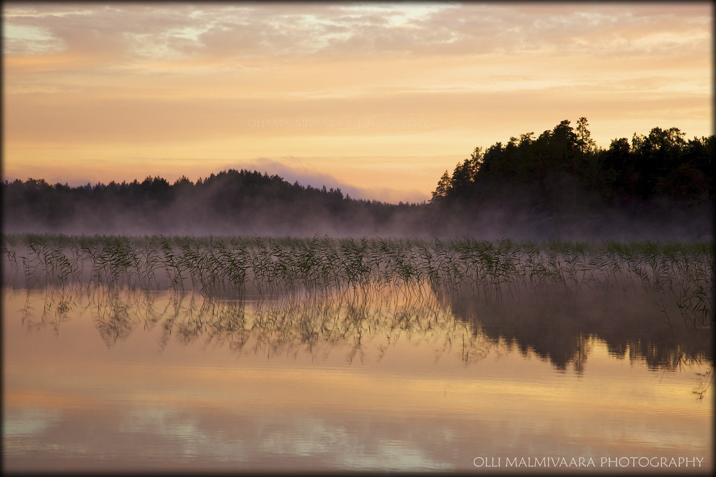 Photograph Summer morning by the lake by Olli Malmivaara on 500px