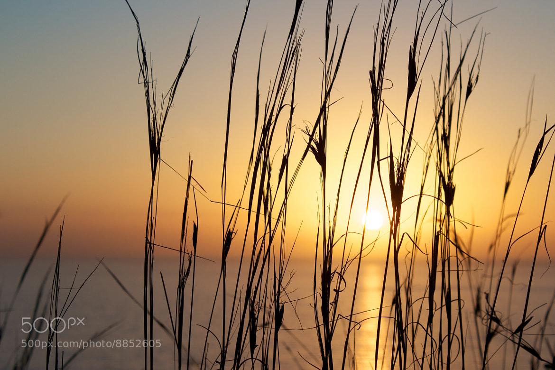 Photograph SUNSET by János Adelsberger on 500px