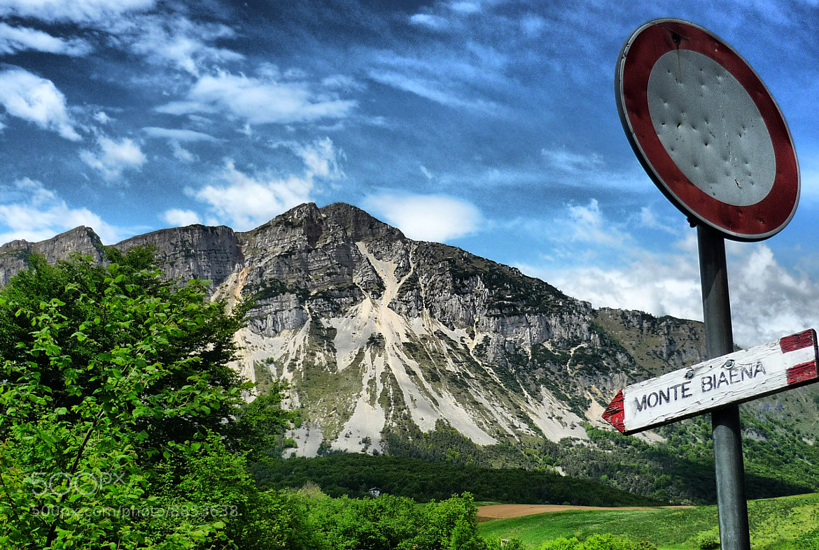 Photograph MOUNTAIN IN TRENTINO (ITALY) by Sushila C. on 500px