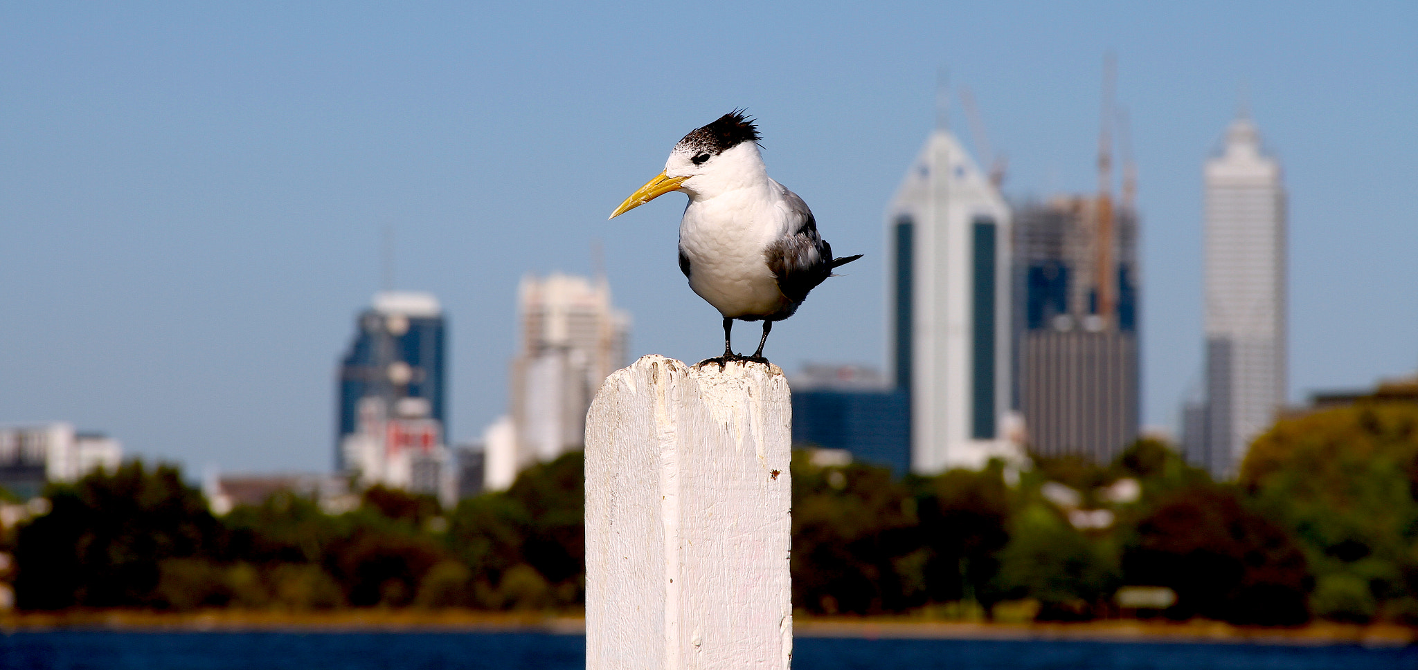 Photograph Perth  by Michael Tedford on 500px