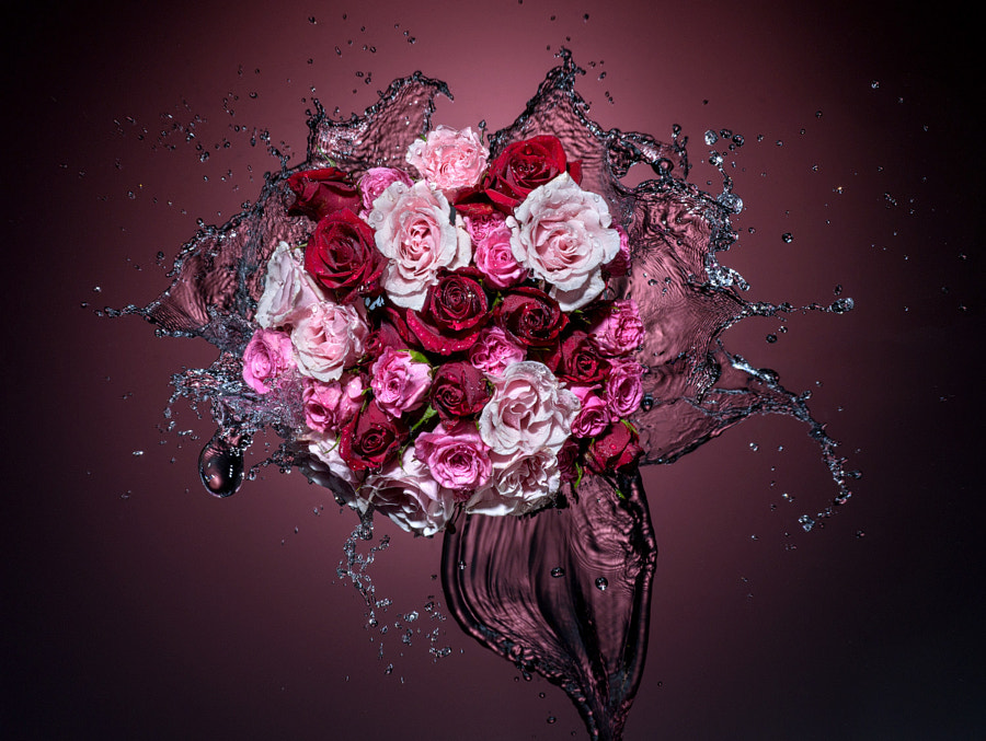 Photograph Splash And Flowers by Alex Koloskov on 500px