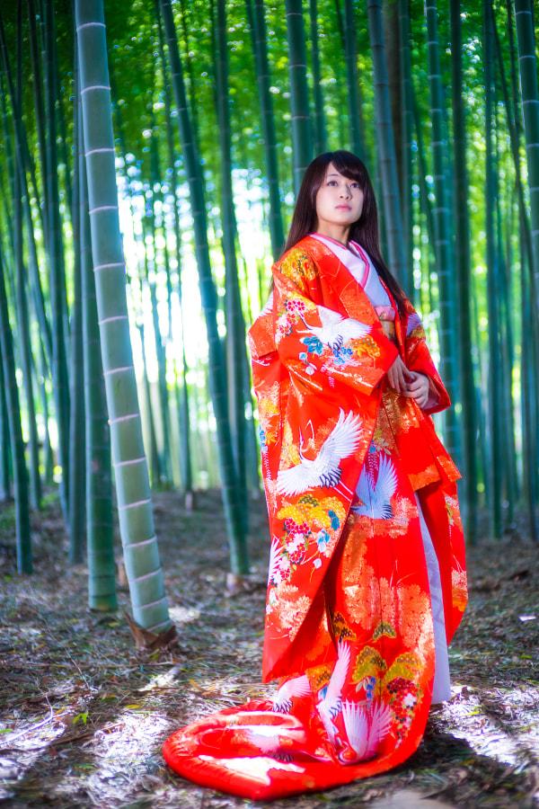 Kaguyahime(かぐや姫)