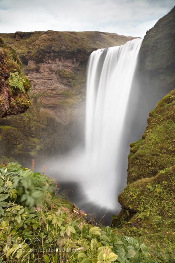Skógafoss es una cascada situada en el recorrido del río Skógá, al sur de Islandia. Es una de las más grandes del país con una anchura de 25 metros y una caída de 60 metros. Debido a la cantidad de espuma que produce constantemente la cascada, un arco iris simple o doble es normalmente visible en los días soleados.   Según la leyenda, el primer colono vikingo en la zona, Þrasi Þórólfsson, enterró un tesoro en una caverna detrás de la cascada. Un chico local encontró el cofre años después, pero sólo fué capaz de agarrar la arandela en el lado del cofre antes de que desapareciera.  En el lado oriental de la cascada, un sendero para excursionismo lleva hasta el paso Fimmvörðuháls entre los glaciares Eyjafjallajökull y Mýrdalsjökull. Baja a Þórsmörk en el otro lado y sigue como la famosa Laugavegur a Landmannalaugar.