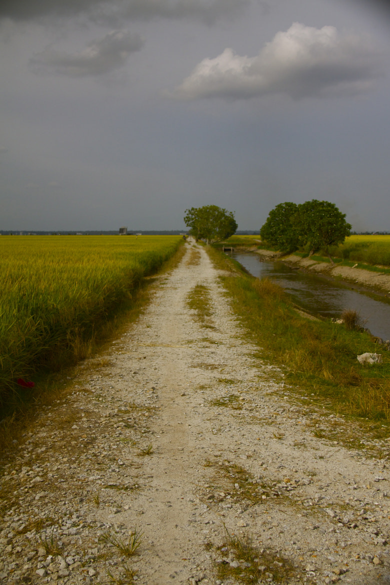 Photograph The road to nowhere by Raj R on 500px