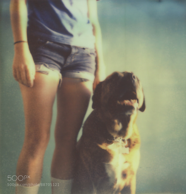 A project I did a couple of years ago but never finished. Polaroid Dogs. This is Duke with his owner.   Shot on an sx-70 with Impossible Project film. I love this series; I need to pick it up and finish it.