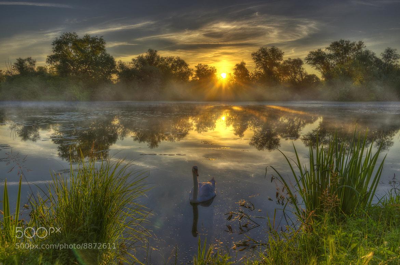 Photograph Sunny morning by Boris Frkovic on 500px