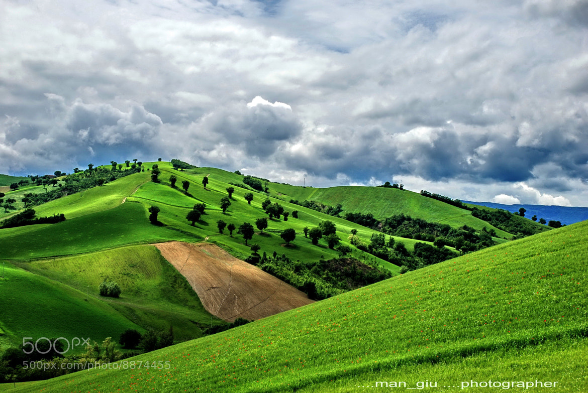 Photograph Green heaven by Giuliano Mangani on 500px