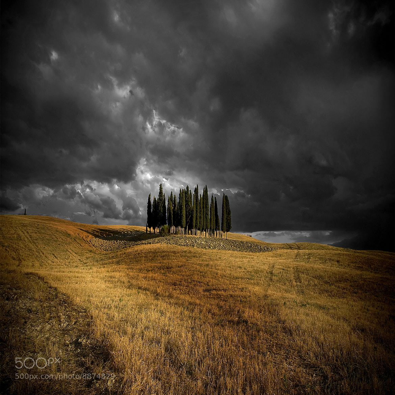 Photograph Contrasts of summer .. by Edmondo Senatore on 500px