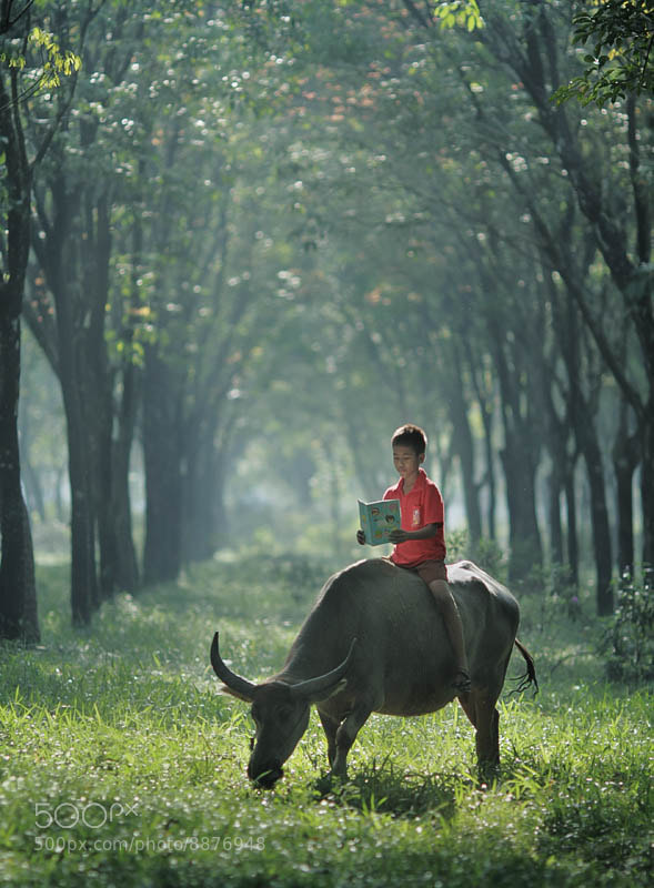 Photograph Reading Everywhere by JD Ardiansyah on 500px