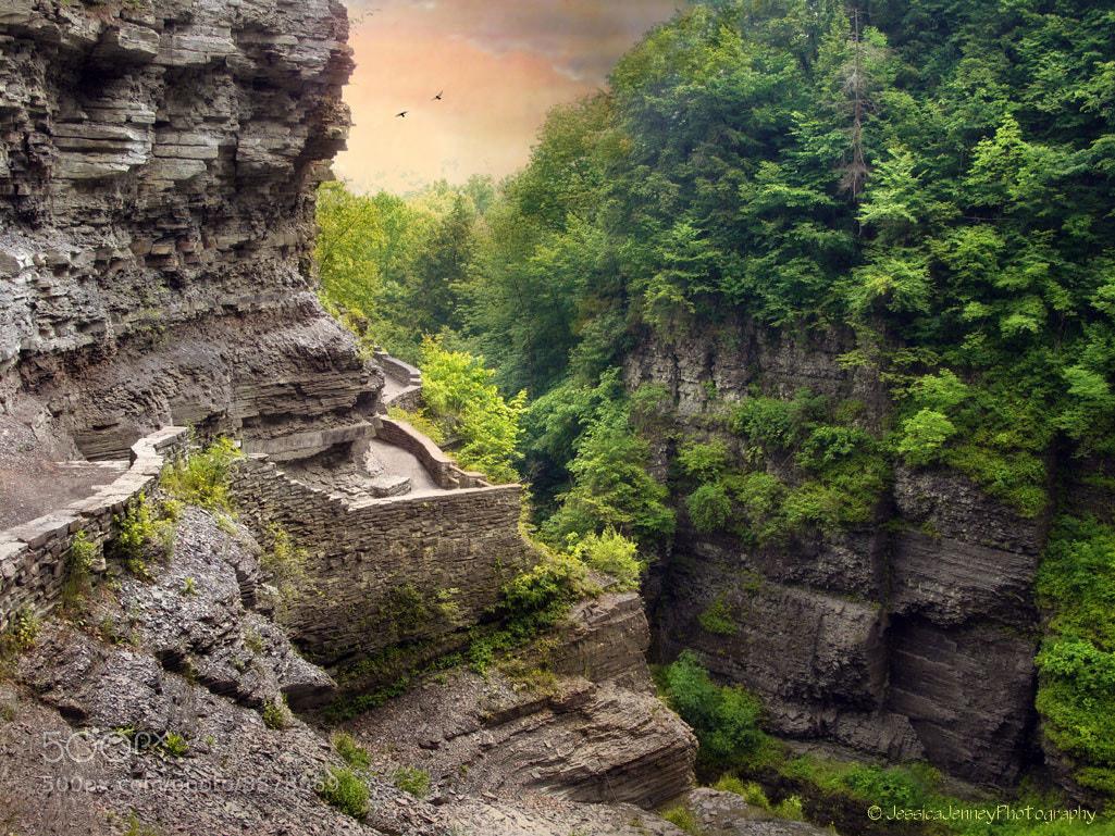 Treman Trail by Jessica Jenney