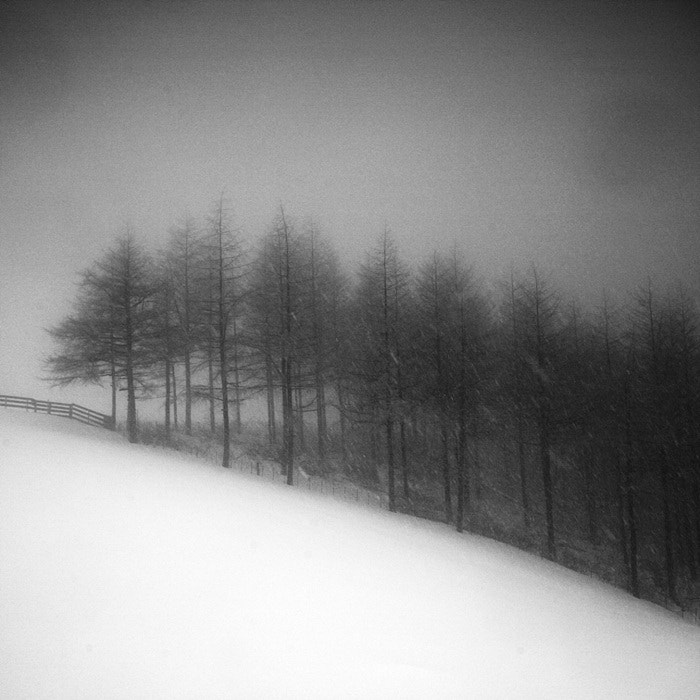 Photograph A Day in Snowy Lands #02 by Namdon Kim on 500px