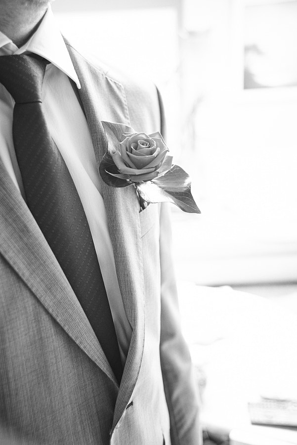 Grooms rose
