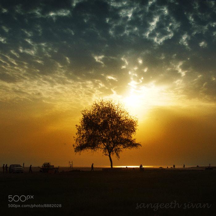Photograph THE SUN BURST by Sangeeth Sivan on 500px
