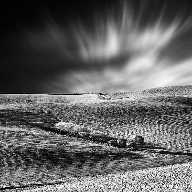 Photograph °°°°° by Simone Lenzi on 500px