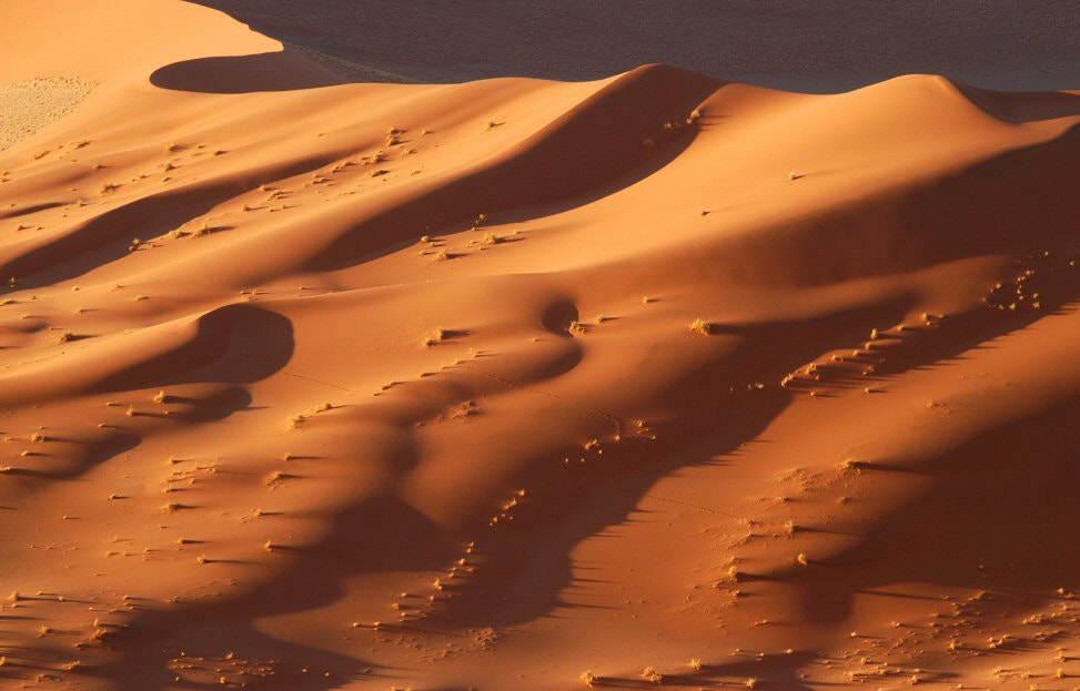 Photograph Namib Dunes by Elmar Weiss on 500px
