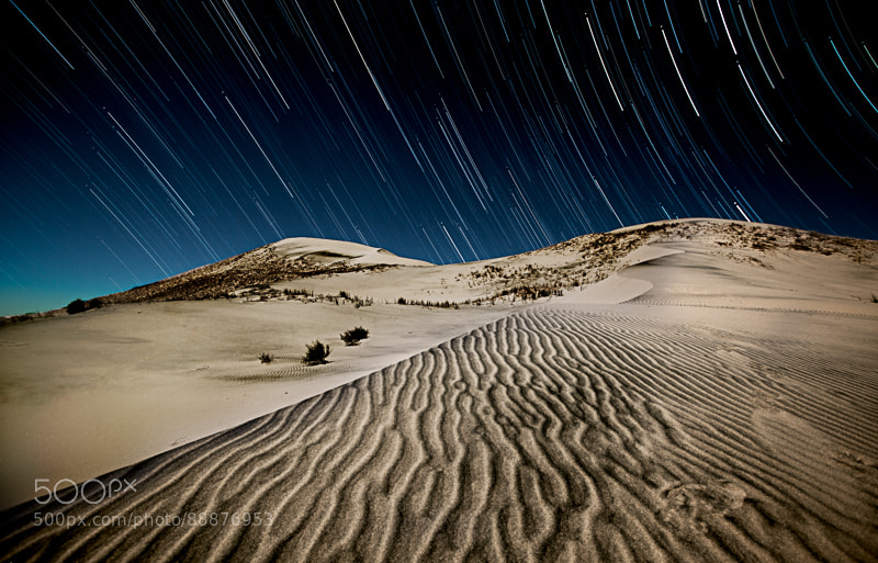 Photograph Dune Trails by tom lowe on 500px